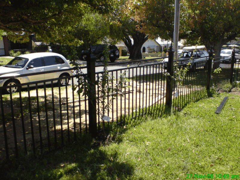 Tubular Steel Fencing Using Square Tube In Nedlands