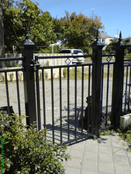 Tubular Steel Gate Using Square Tube And Victorian Post Capitals In Nedlands